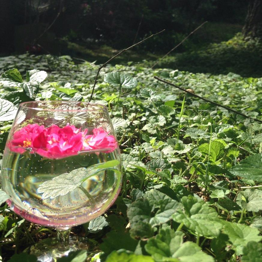 Rosefloweressence